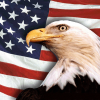 Us flag and eagle